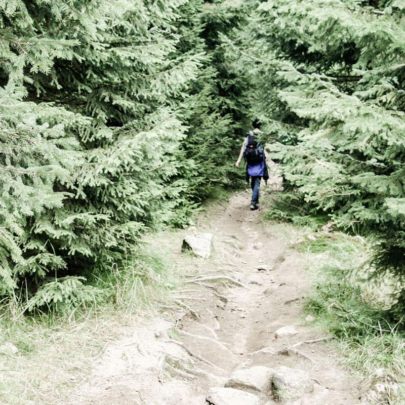 Annika beim Wandern im Harz