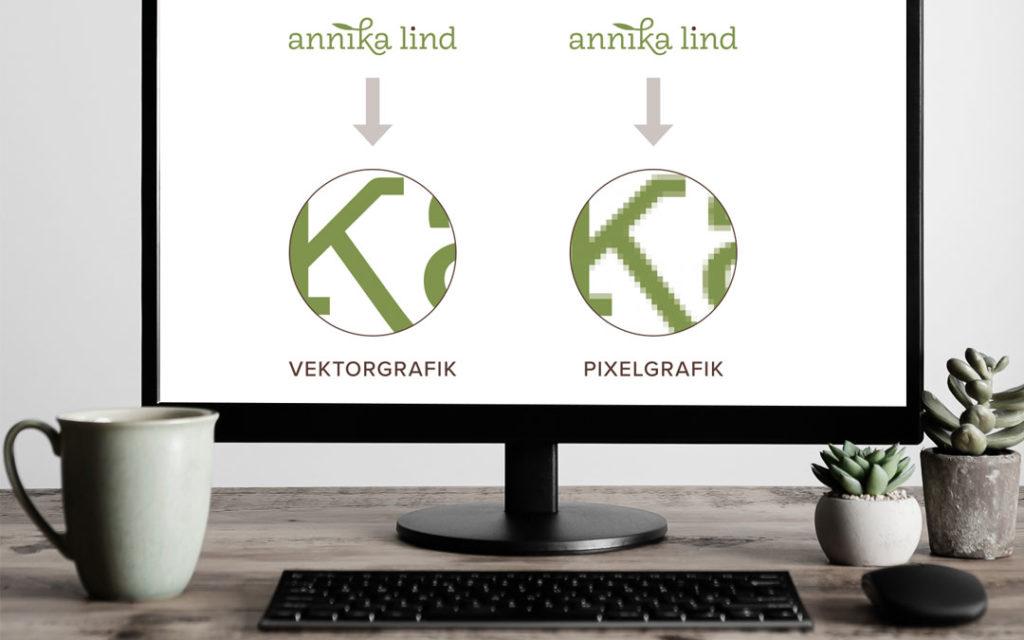 Vektorgrafiken bestehen aus Linien und Kurven, Pixelgrafiken aus kleinen Bildpunkten.